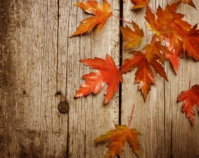 Выставка Осенний калейдоскоп в Пензе